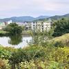 篭池・中池(兵庫県洲本)