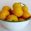 本柚子で柚子茶(マーマレード)