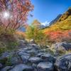 【登山】2018年もあの場所へ「涸沢カール」で紅葉を満喫してきました