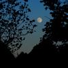 9月17日は魚座の満月★おまじない