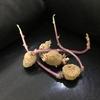 芽が出たジャガイモは育てちゃいましょう!