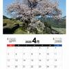 自分で撮った写真で2020年カレンダー作成。