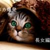 親バカ爆発 長女編Ⅱ