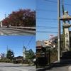 歩いて再び京の都へ 旧中山道69次夫婦歩き旅  第37回    1日目・中編 高宮宿 ~彦根堺