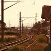 今日の撮りPhoto - 風景 LEICA DG MACRO-ELMARIT 45mm/F2.8 -