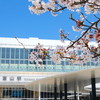 富山へ - vol.3 - 2021お花見 富山駅 富山ブラックラーメン 西町大喜