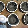 石膏造形あそび ②