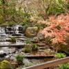 【kogasanaの写真素材集】好古園の紅葉