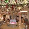 【天王寺ミオ】改札出てすぐ!Tree cafe(ツリーカフェ)がお洒落で可愛い!