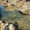 久米島旅行記2