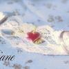 どうして結婚指輪は金でなく銀なのか ~お得な5000円クーポンプレゼント!~