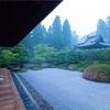 京都・京田辺 - 沙羅の花と驟雨に打たれる酬恩庵庭園
