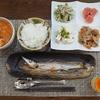【料理】ズボラな私の晩御飯!チキンのトマトスープ煮・レンコンと人参の甘辛煮・ゴーヤサラダ・カマス塩焼き・プリン!