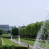 昭和記念公園のユリ、ひまわり。