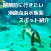 【閉鎖する前に絶対見たい】須磨海浜水族園の魅力的なスポット紹介