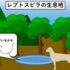 【犬のレプトスピラ染症】犬だけじゃない、人にもかかる怖い細菌