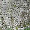 二条城に唯一残る慶長期の石垣?