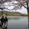 海外に住んでいる日本人が日本の良さを伝えたいという違和感3