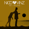 "Nico & Vinz ""Am I Wrong"" 歌詞和訳"