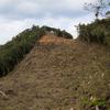 2019年やんばる紀行-森林破壊の現場を歩く