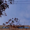 作曲工房 朝の天気 2018-02-16(金)晴れ