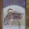 今日のカード The Swan