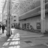 #filmphotography モノクロ朝散歩