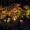 2017京都紅葉シリーズ「北野天満宮もみじ苑ライトアップ」 THETAによる360°全天球撮影も #紅葉 #eosm6 #theta360
