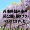 兵庫県朝来市の藤公園・藤まつりにいってきました