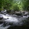 渓流ロッドの感度