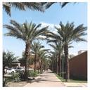 光一郎のアリゾナ留学ブログ