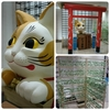 岩合光昭写真展「ねこの京都」にいって癒されました!