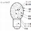 閃光電球(Flash bulb)