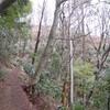 勝俣部長の「高尾登山と健康体質作り」510・・・・歌を思い出そう