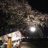 夜の花見ドライブ散歩