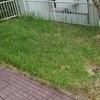 ただとにかく庭の草取りをして土を耕す日々を送っているの巻
