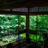 京都の新緑・瑠璃光院の特別拝観に行ってきた