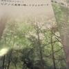 森の中でのピアノ3重奏