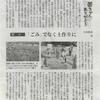 新聞連載29話 草で菌ちゃんの土を作る1