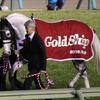 JRA札幌2歳S(G3)はゴールドシップ祭り!? 異例の「5頭出し」は洋芝よりも、意外な適性が大きく影響か