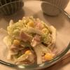 サラダ野菜が高い時期に 生で食べる白菜コールスロー