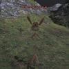 【攻略】Orcfeltrap - 【ウォンテッド1】 CL119
