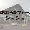 2015年の「全国直売所甲子園」で全国制覇した直売所『おおむら夢ファームシュシュ』