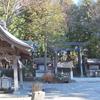 2016年冬長野旅行 下諏訪観光