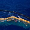 海洋ごみのリサイクルに挑む 「オーシャンクリーンアップ」河川にも広がるプラごみ回収