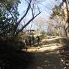 勝俣部長の「高尾登山と健康体質作り」488・・・・むしろ 呆れる