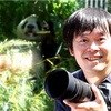 「私とパンダ、どっちが大事なの」 毎日パンダの会社員