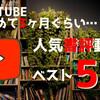 【3ヶ月ぐらい継続した結果】『ミステリー小説専門ブックチューバー』の人気動画ランキングトップ5を紹介します!【チャンネル登録お願いします!】