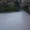彦根城のお堀ライトアップ