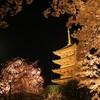 東寺の夜桜とブルームーンが最高に美しかった【関西花見旅行#1】